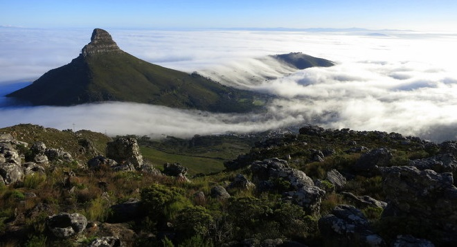 So Much to Discover on Table Mountain.